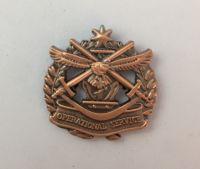 Operational Service Medal Badge