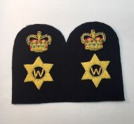Chief Petty Officer Writer -Collar Rank/Rate Gold Wire (Pair)