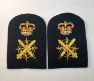 Chief Petty Officer CSO -Collar Rank/Rate Gold Wire (Pair)